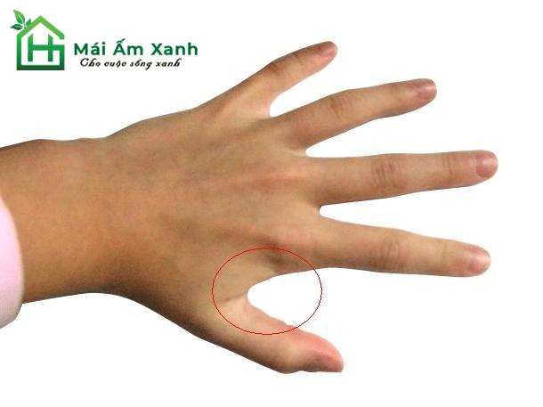 Dùng một viên đá lạnh và chà lên vùng da giữa ngón tay cái và ngón tay trỏ